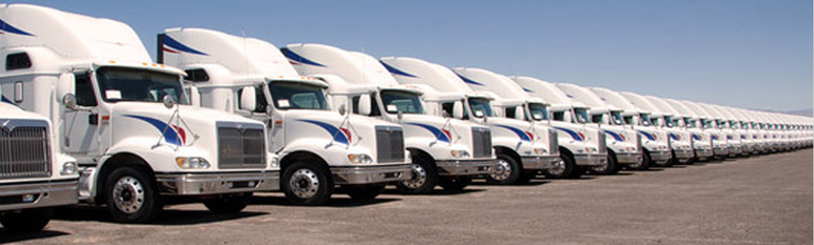 Tampa Semi Tractor Trailer Fleet